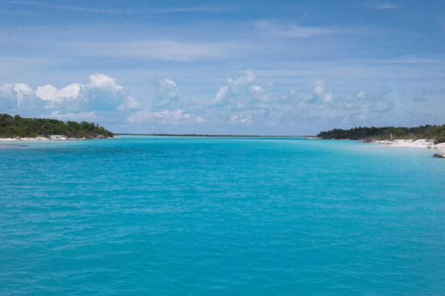 TheRealBahamas LLC Kayaking: Full Day: TJ's Boat Rental