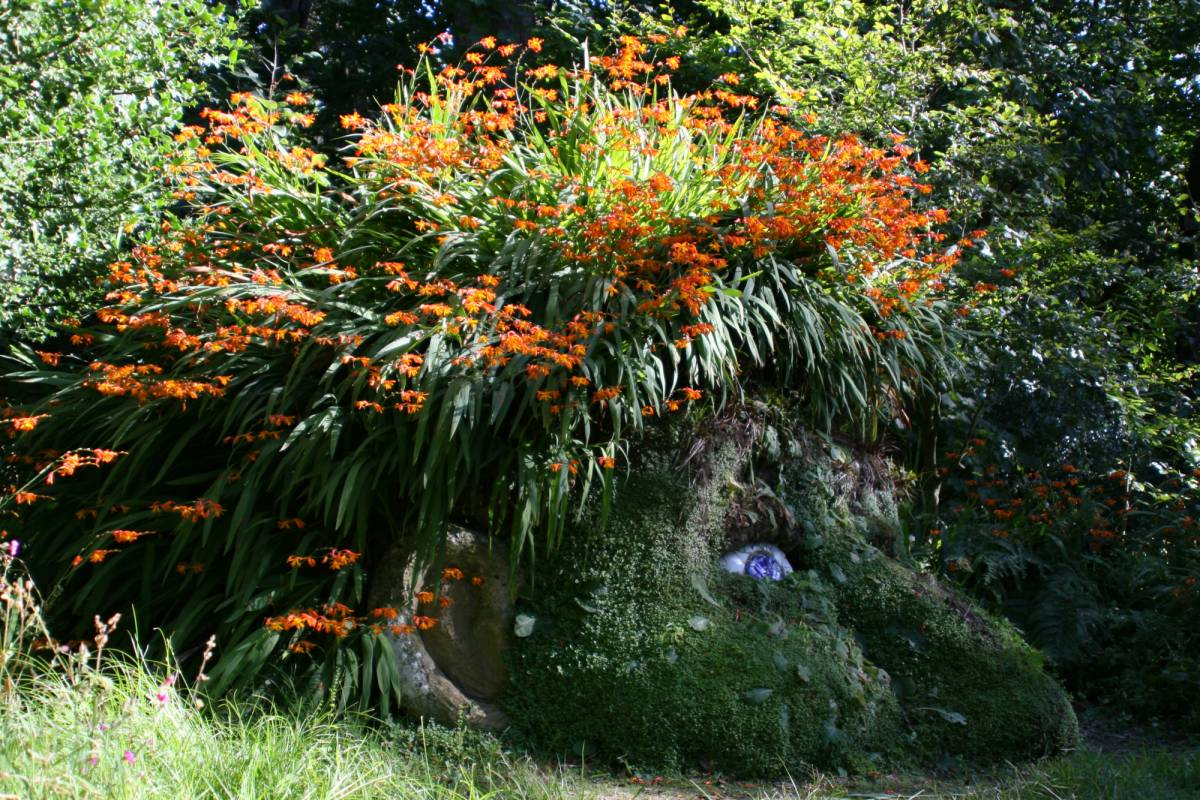 Oates Travel St Ives Lost Gardens of Heligan every Thursday