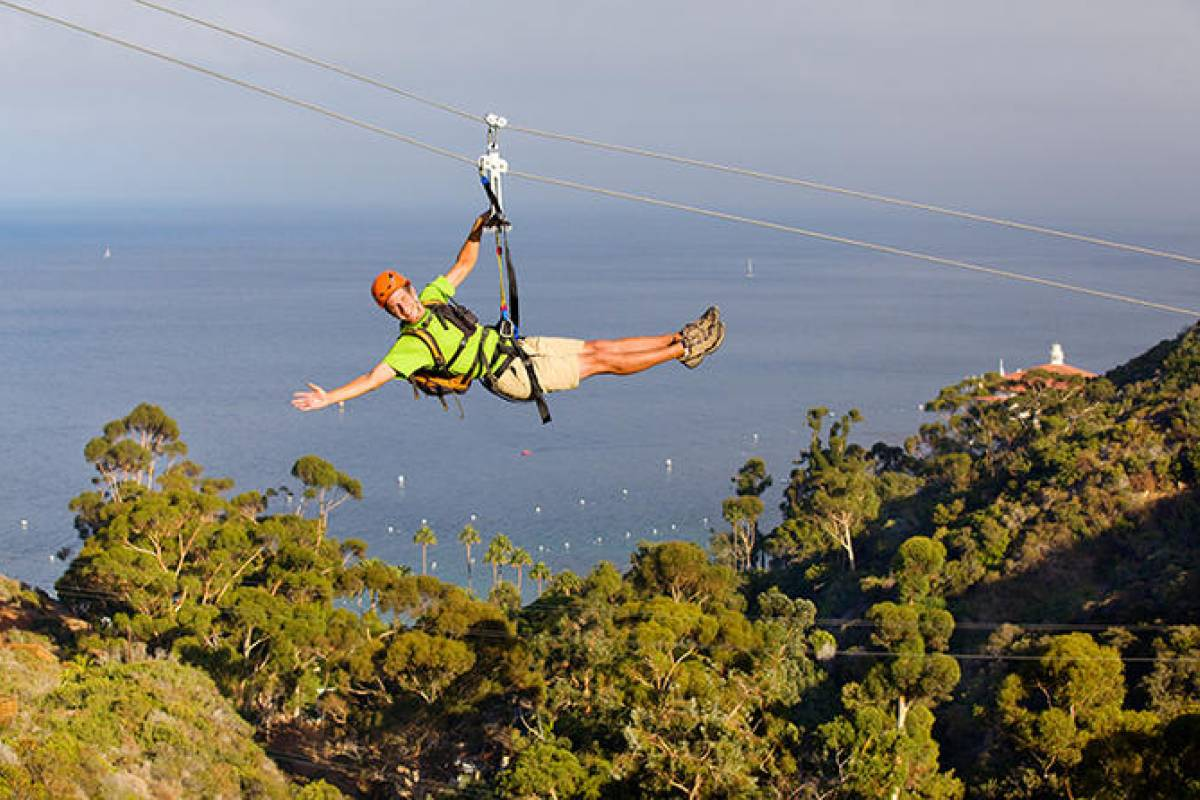 Dream Vacation Builders Catalina Express + Zipline  + Round Trip Transfers (ANA) Tour #CX3