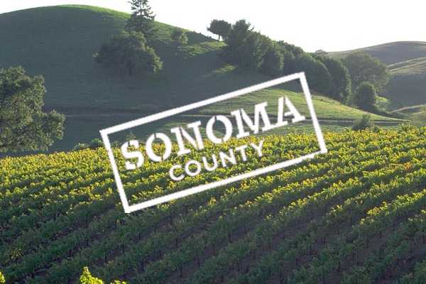 Southern California Ticket & Tour Center Wine Country Half Day Tour