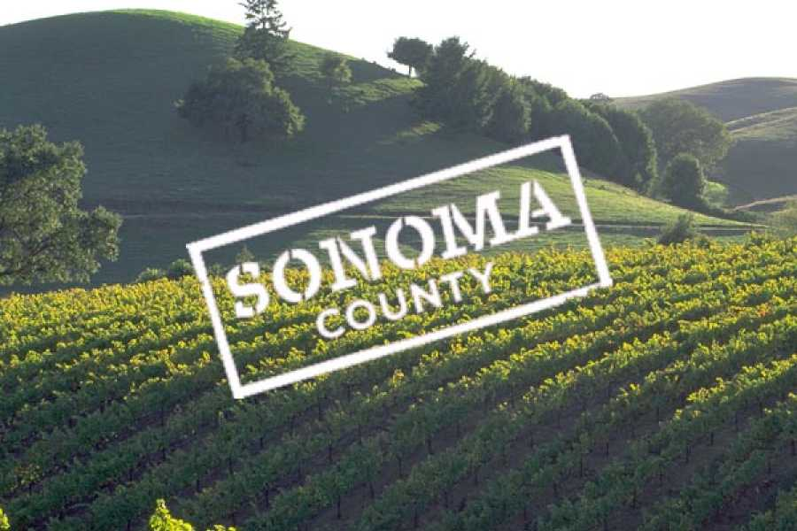 Dream Vacation Builders Wine Country Half Day Tour