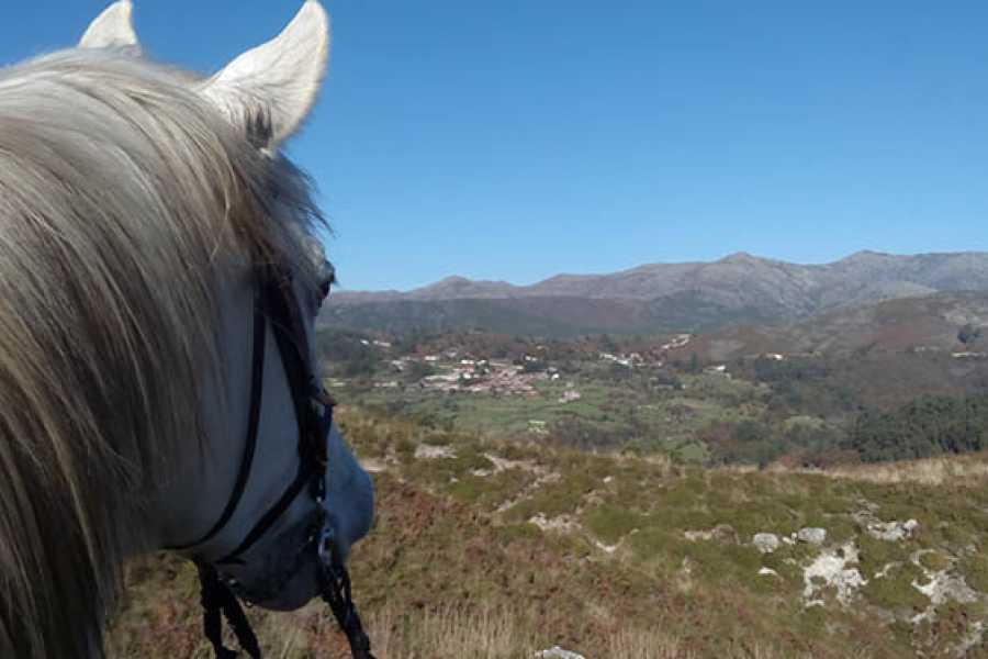 Gerês Holidays 1h Horse Riding