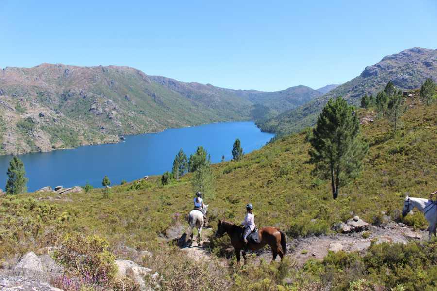 Gerês Holidays 2h Horse Riding