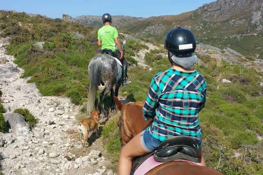 Gerês Holidays Rundreisen der Dörfer 1 Tag Reittour