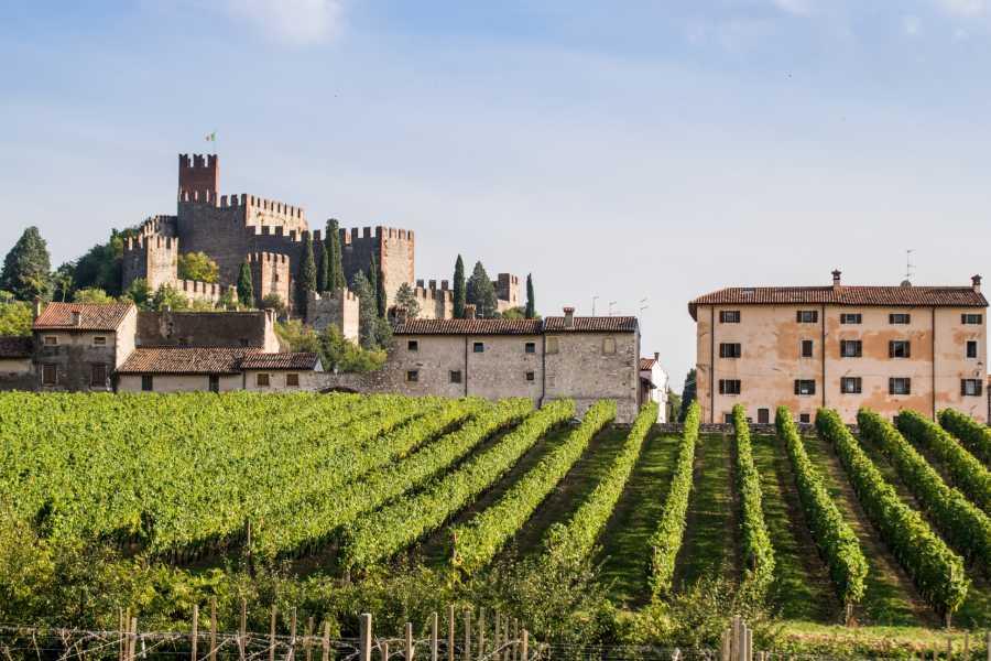 VERONALITY Soave Borgo & Amarone Wine Tasting Tour