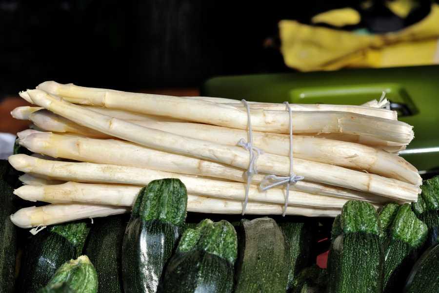 The Italian Tours Badoere asparagus tasting tour - RB25