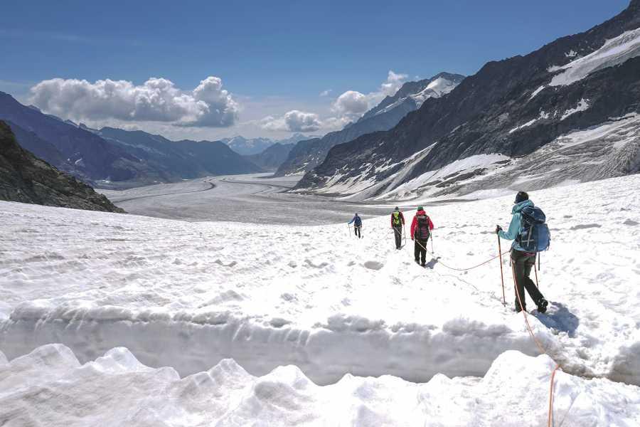 Grindelwaldsports Aletsch Glacier Hike