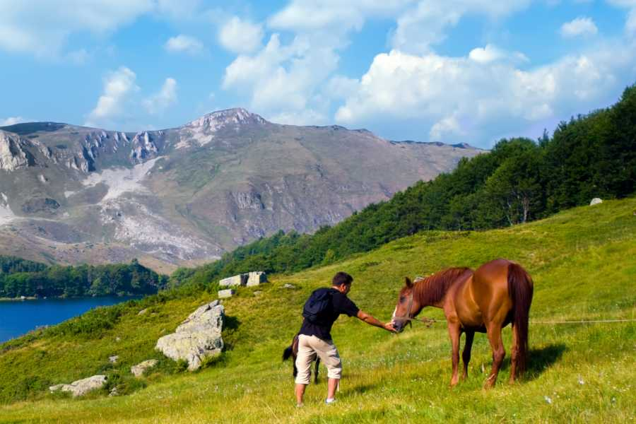 Tarakularaft HORSE RIDING ON DURMITOR MOUNTAIN