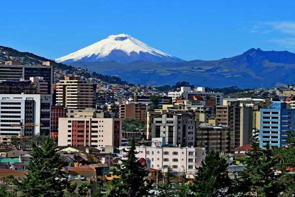 Gray Line Ecuador Discover Ecuador