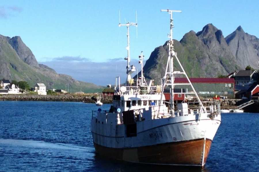 Aqua Lofoten Coast Adventure AS Fishing with Trio II