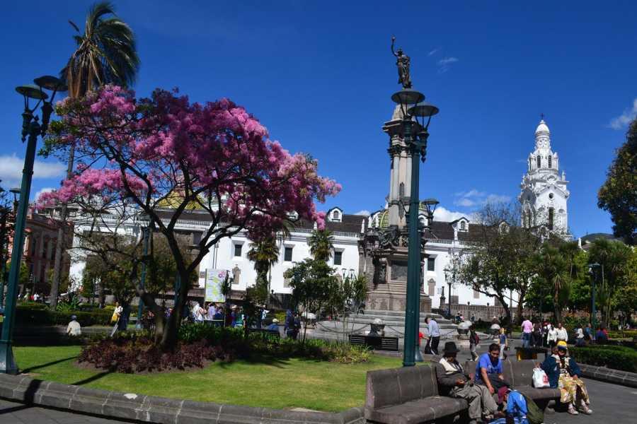 Gray Line Ecuador Quito & Galapagos