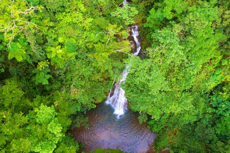 Krain Concierges Borinquen Canopy & Hot Springs Experience
