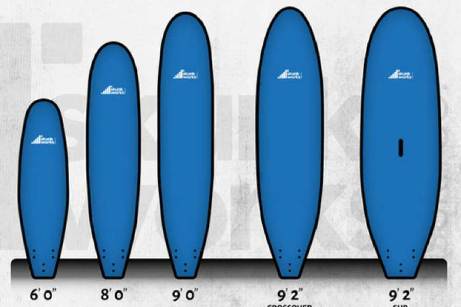 Alive Surf School Surfboard Rental