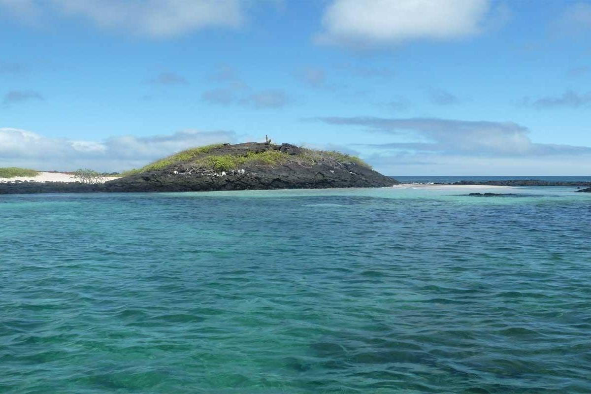 Gray Line Ecuador Ideal Galapagos