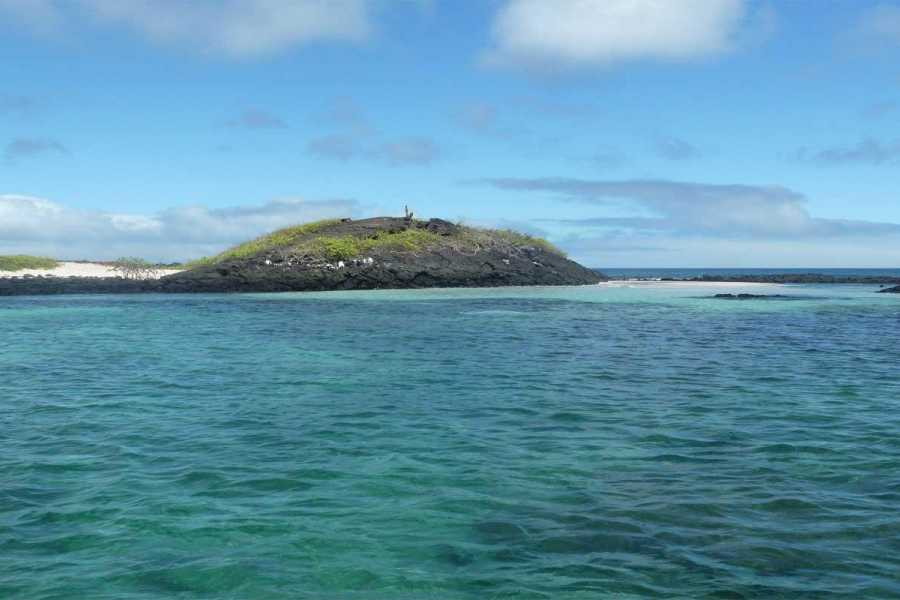 Gray Line Ecuador Ideal Galapagos