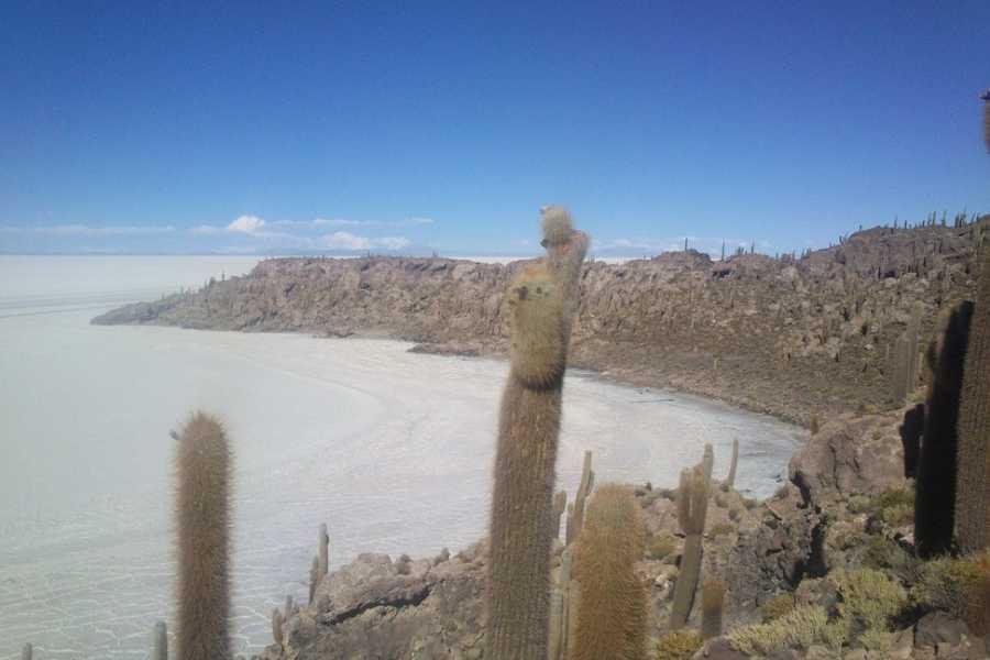 buhostours Salar De Uyuni (1 día)