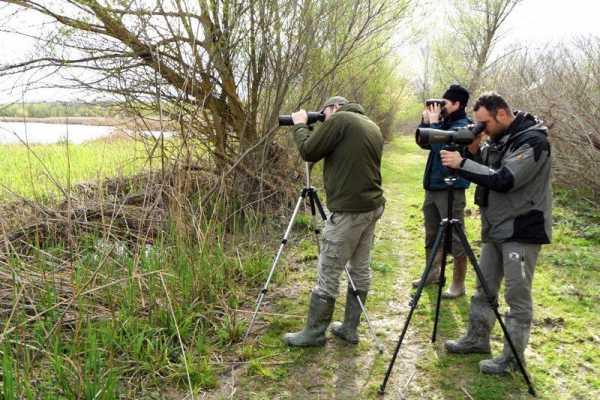 (VIP) Il Grande Concorso Fotografico all'Oasi WWF di Alviano