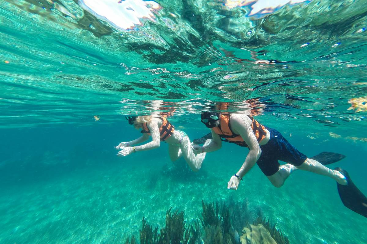 Cancun Vacation Experts PARADISE SNORKEL