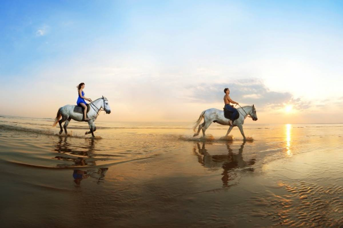 Tour Guanacaste Horseback Riding Tour