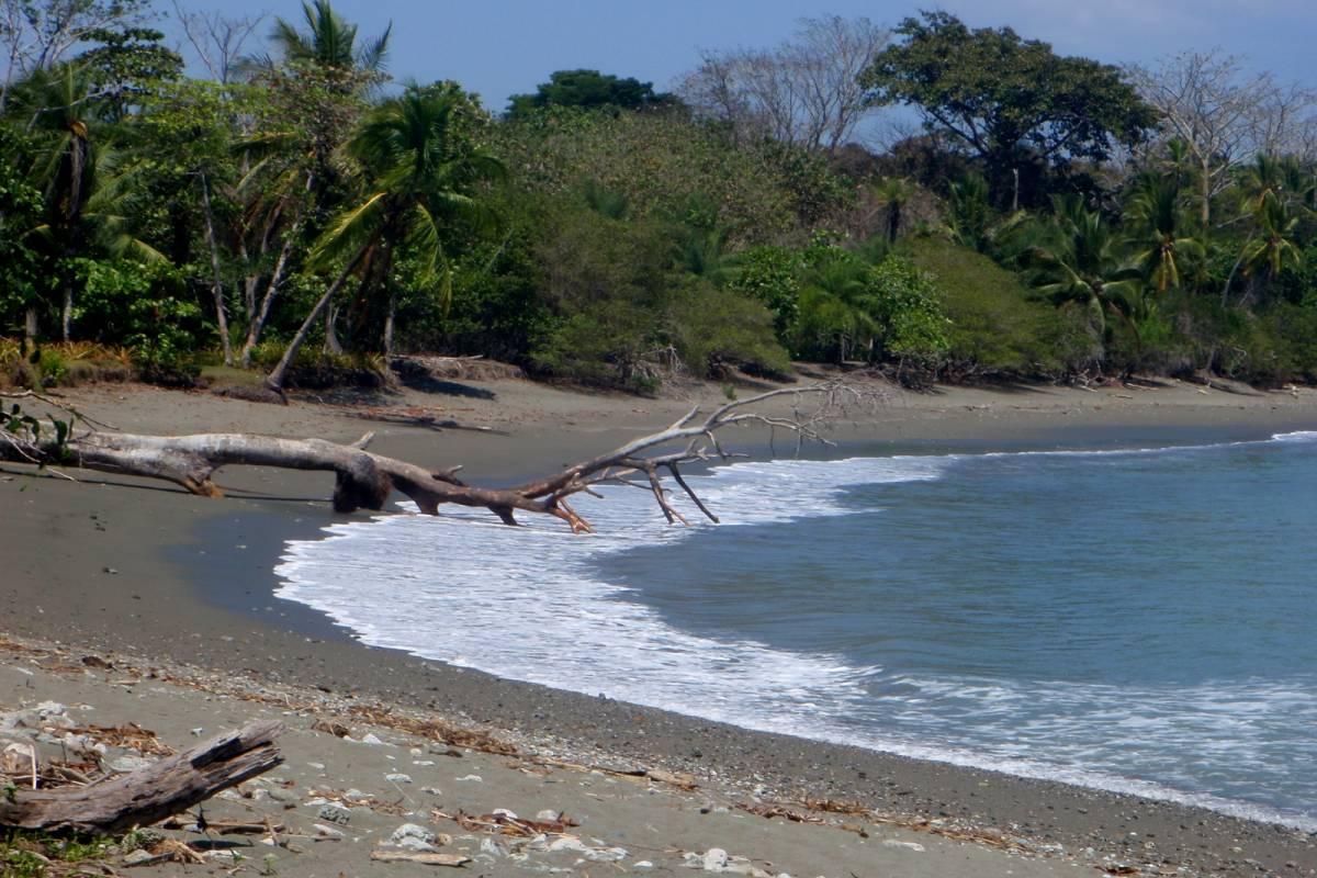 Tour Guanacaste Matapalo Beach ATV
