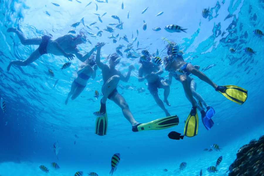 Tour Guanacaste Reef Snorkeling and ATV 3hr Tour