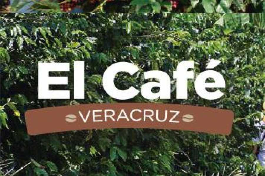 Tours & Tickets Operador Turístico THE COFFE IN  VERACRUZ – 3 DAYS Y 2 NIGHTS