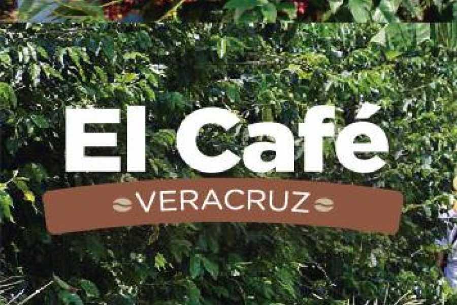 Tours y Tickets Operador Turístico THE COFFE IN  VERACRUZ – 3 DAYS Y 2 NIGHTS