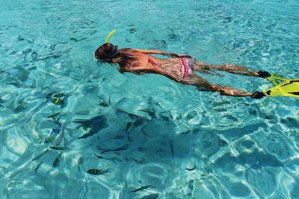 Blue Bay Dive & Watersports 1 hour snorkel tour