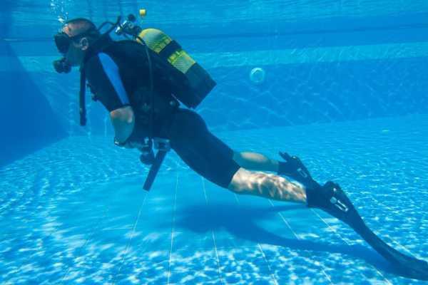 Nature Meetings Scuba Diving at coast of Madeira