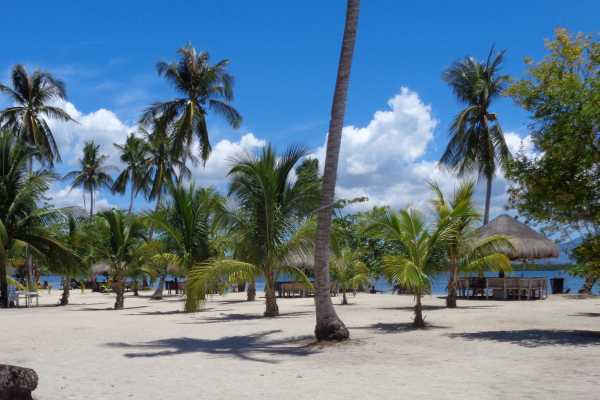 WORLD HOLIDAY TRAVEL AND TOURS Puerto Island package : 3d & 2n