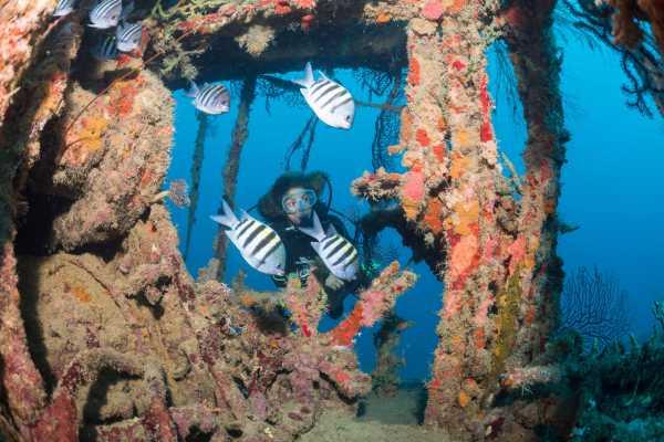 Aquanauts Grenada SGU Advanced Open Water Course