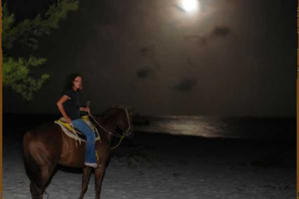 I-land Aruba Tours Western Moonlight Ride