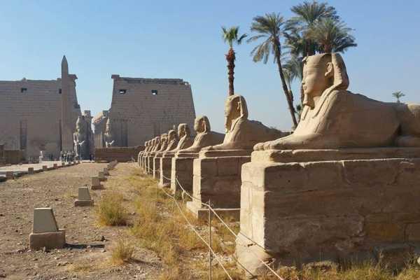 Marsa alam tours Übernachtung mit dem Flugzeug von Kairo nach Luxor