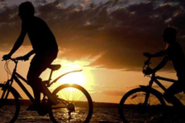 Albufera Bike Tour