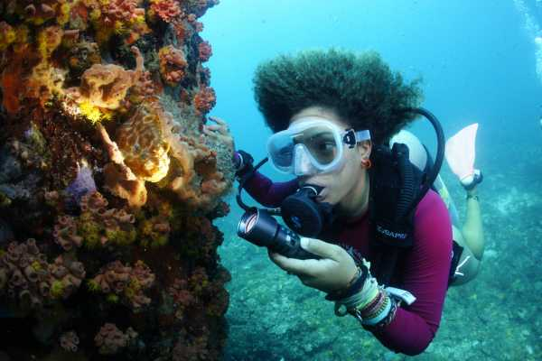 Aquanauts Grenada All day dive Package