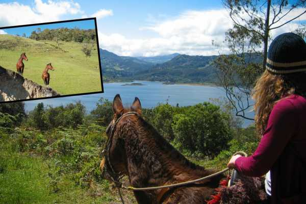 Andes Ecotours Mountain Trail Horseback Riding