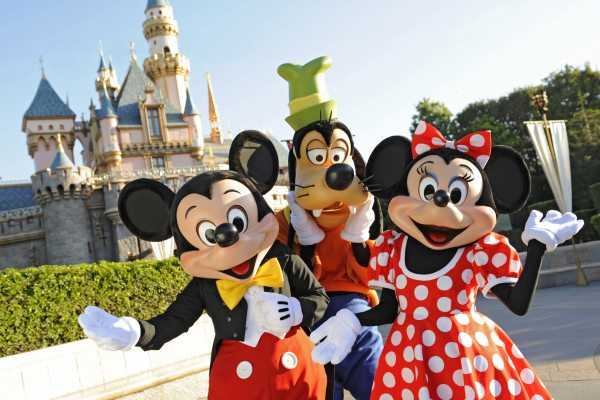 Dream Vacation Builders Disneyland Resort 1 Day Park Hopper + Round Trip Transfer (DLR2)