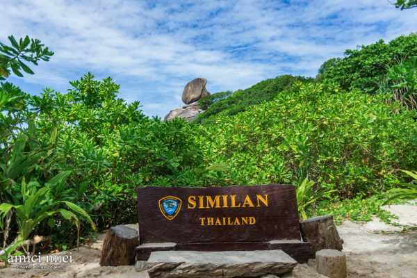 AMICI MIEI PHUKET TRAVEL AGENCY SIMILAN ISLAND STARTING FROM PHUKET, SARASIN BRIDGE - AM001
