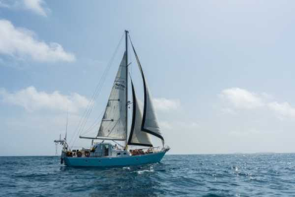 Cacique Cruiser BOAT TO PANAMA - Wildcard Sailboat