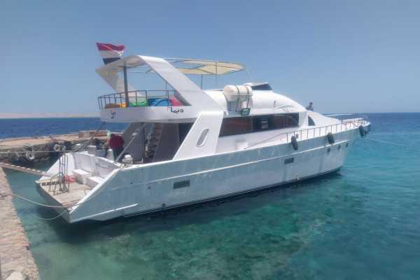 Excursies Egypte Prive boot huren naar het dolfijnen huis vanuit  El Gouna