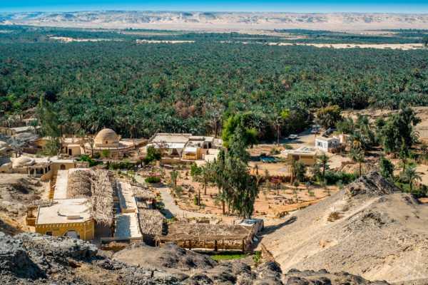 Excursies Egypte Dag excursie naar El Fayoum vanuit Caïro