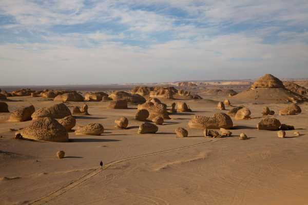 Marsa alam tours VALLEY OF WHALES TWO DAYS TOUR FROM CAIRO
