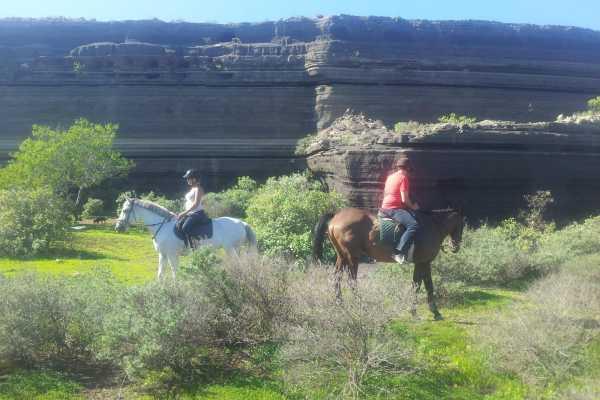 Hipica Canaria Ruta de 2 horas a caballo: Aventurosa!