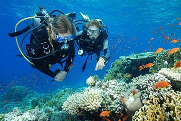 Excursies Egypte Padi Open water course in Hurghada