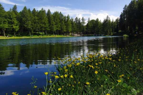 Modenatur Vivi l'estate in Appennino