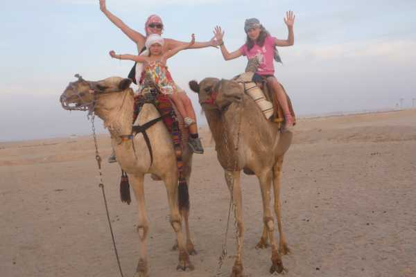 Excursies Egypte Camel ride trip from Marsa Alam