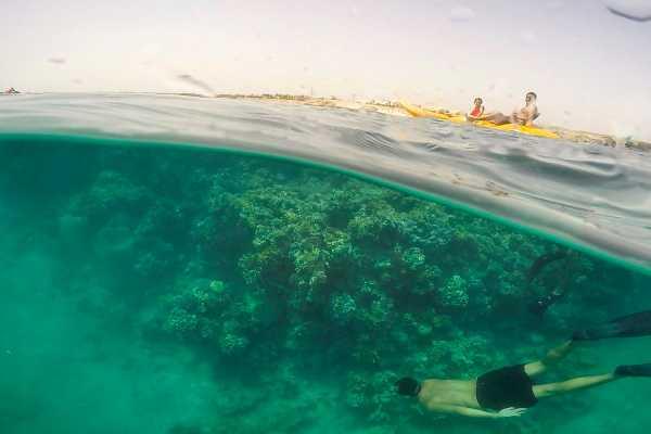 Excursies Egypte Snorkeling Trip At Port Ghalib Marina from Portghalib.