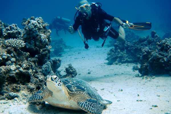 Excursies Egypte Padi Scuba Diving In Port Ghalib