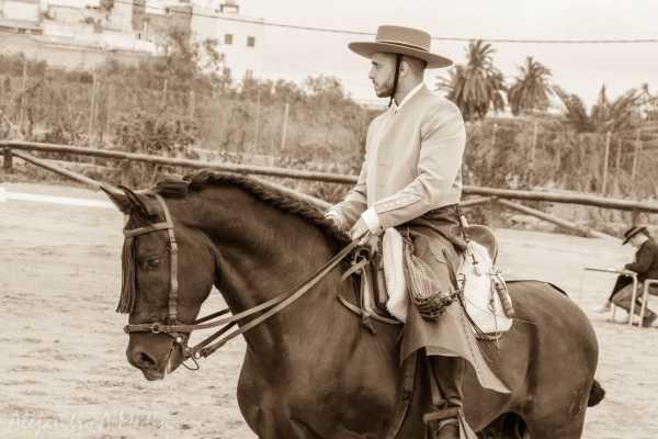 Hipica Canaria Cours d''equitation