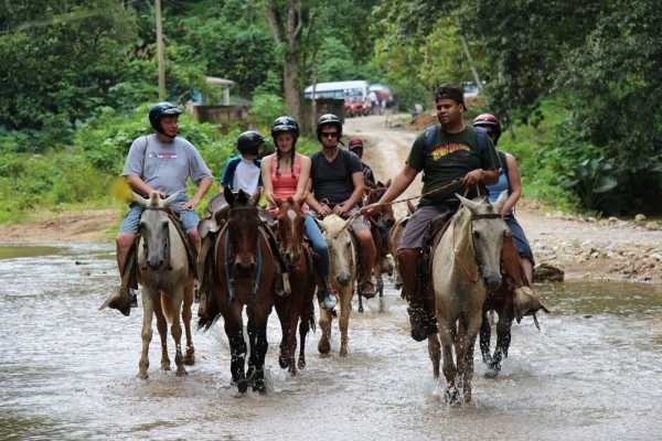 Tour Samana With Terry HOTEL EXCURSION #6a:  Zip Line+Horseback